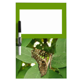Tablero verde iridiscente tropical de la nota de l pizarras blancas