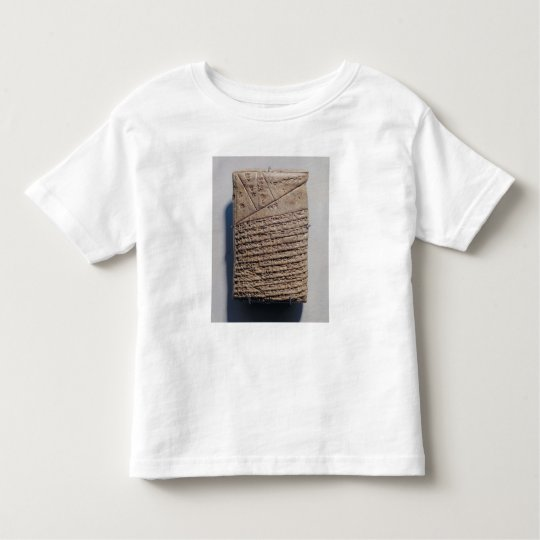 Tablet with fourteen lines of a mathematical text toddler t-shirt