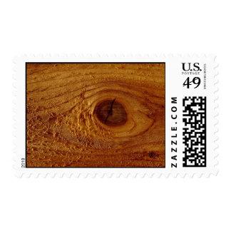 Tablón de la madera, textura del primer franqueo