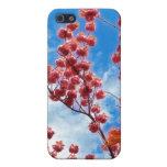 Tabor en el iPhone 4 de la primavera iPhone 5 Protector