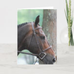 Tacked Dark Bay Horse Greeting Card
