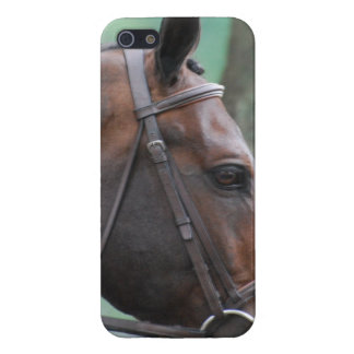 Tacked Dark Bay Horse Cases For iPhone 5