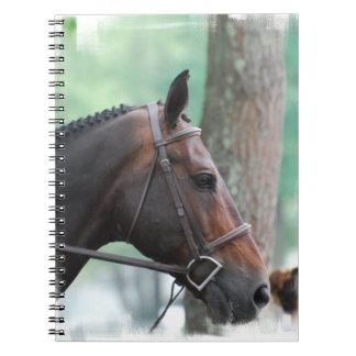 Tacked Dark Bay Horse Notebook