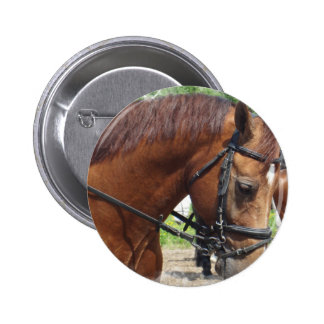 Tacked Draft Horse  Button