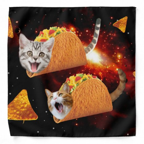 Taco Cats Space Bandana