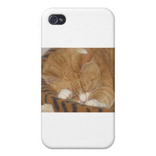 Taco the Siesta Cat Case For iPhone 4
