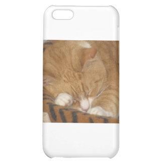 Taco the Siesta Cat Case For iPhone 5C