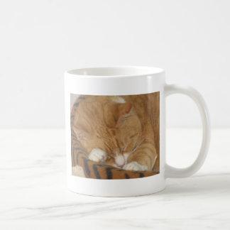 Taco the Siesta Cat Classic White Coffee Mug