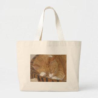 Taco the Siesta Cat Jumbo Tote Bag
