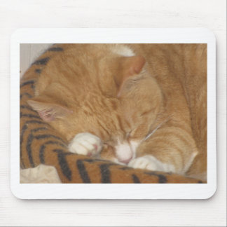 Taco the Siesta Cat Mousepads