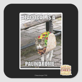 TACOCAT IS A PALINDROME SQUARE STICKER