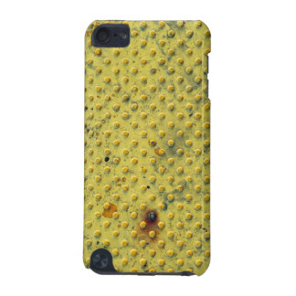 Tactile Paving iPod Touch (5th Generation) Cover