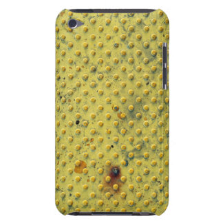 Tactile Paving Barely There iPod Cases