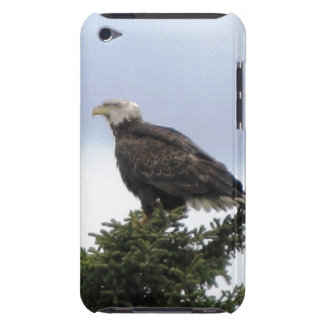Tacto Barely There de Kenai Alaska Eagle calvo IPo Barely There iPod Cárcasas