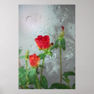 Tacto de la lluvia póster