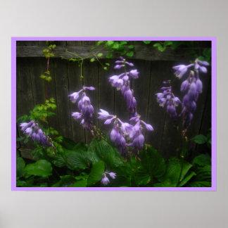 tacto de la púrpura impresiones