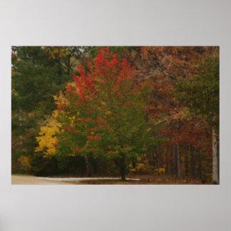 Tacto del otoño poster