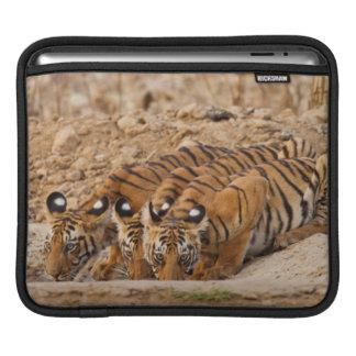 Tadoba Andheri Tiger Reserve Sleeve For iPads