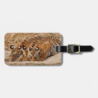 Tadoba Andheri Tiger Reserve Tag For Luggage