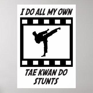 Tae Kwan Do Stunts Poster