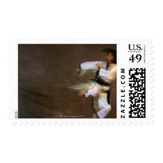 Tae Kwon Do Leap Kick Postage Stamps