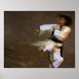 Tae Kwon Do Leap Kick Poster