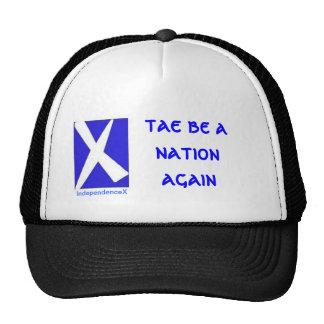 Tae sea un gorra de IndependenceX de la nación otr