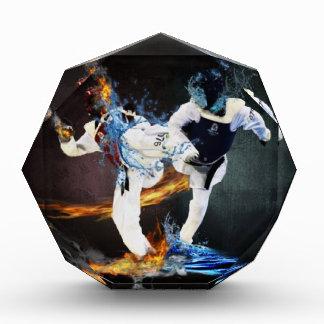 taekwondo award