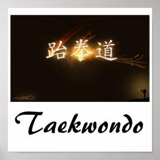 taekwondo poster, taekwondo
