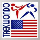 Taekwondo United States Poster