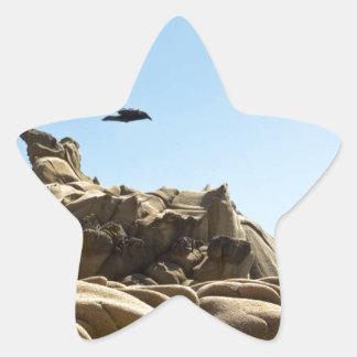 Tafoni Hover Raven Star Sticker