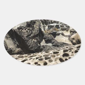 Tafoni Jaguar Oval Sticker