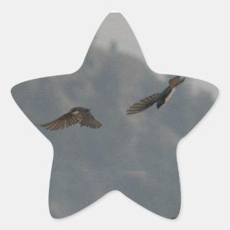 Tag Star Sticker