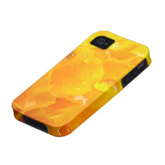 Tagetes iPhone 4 Cases
