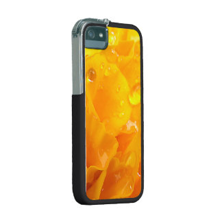 Tagetes iPhone 5/5S Cases