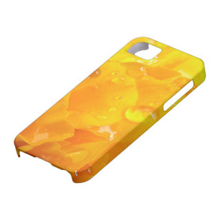Tagetes iPhone 5 Cover