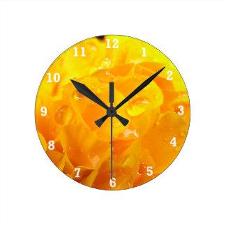 Tagetes Round Clock
