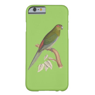 Tahiti Parakeet Illustration, c. 1849 Barely There iPhone 6 Case