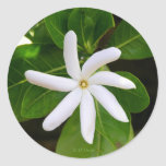 Tahiti Tiare Sticker