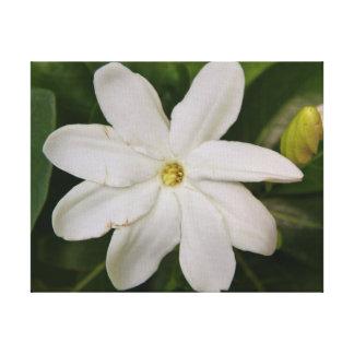 Tahitian Gardena Stretched Canvas Print