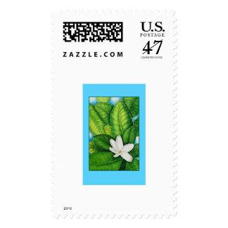 Tahitian Gardenia Postage