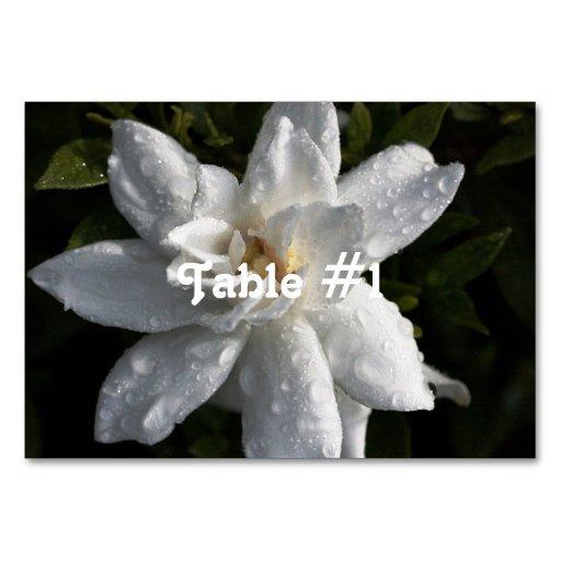 Tahitian Gardenia Table Cards