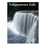 Tahquamenon Falls, Paradise, Michigan Postcards