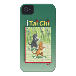 Tai Chi Cats iPhone 4 Case (Bud and Tony)