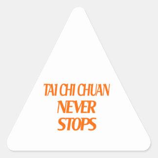 Tai Chi Chuan Never Stops Triangle Sticker