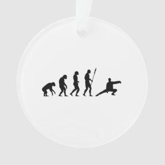 tai chi evolution ornament