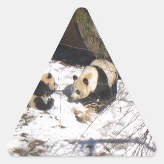 Tai Shan and Mei Xiang, giant panda bears Triangle Sticker