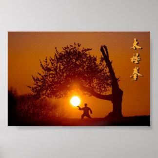 Taichi (taiji), árbol cerezo sol durmiendo póster