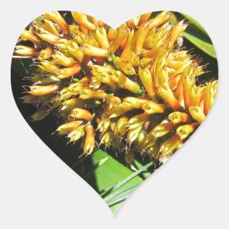 Tail Bromeliad Heart Sticker