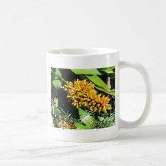 Tail Bromeliad Coffee Mug